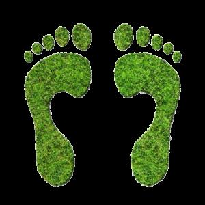 eco_footprints