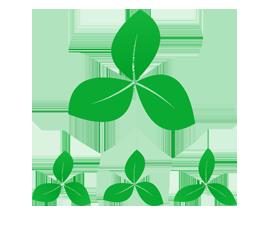 napking-ecogreen-logo